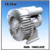 XWB-20(18500W)-旋涡泵