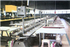 XP12D制帮生产线